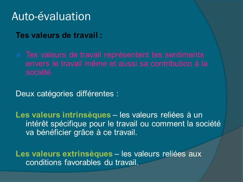 Auto-évaluation Tes valeurs de travail :