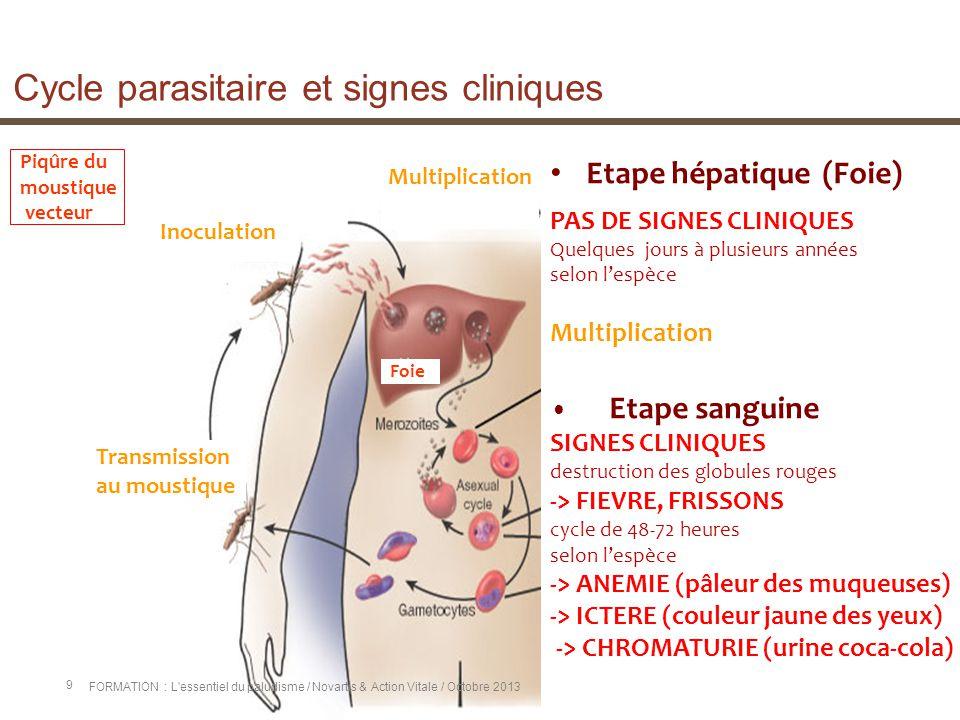 Cycle parasitaire et signes cliniques