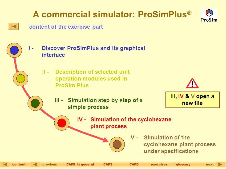 A commercial simulator: ProSimPlus®