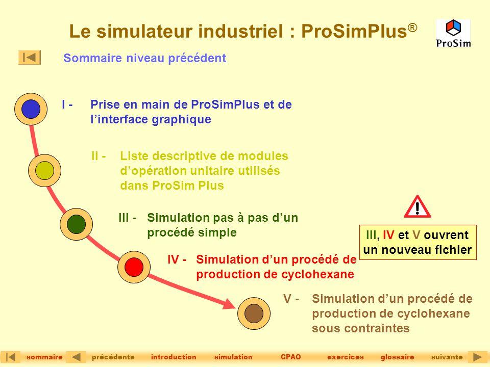 Le simulateur industriel : ProSimPlus®