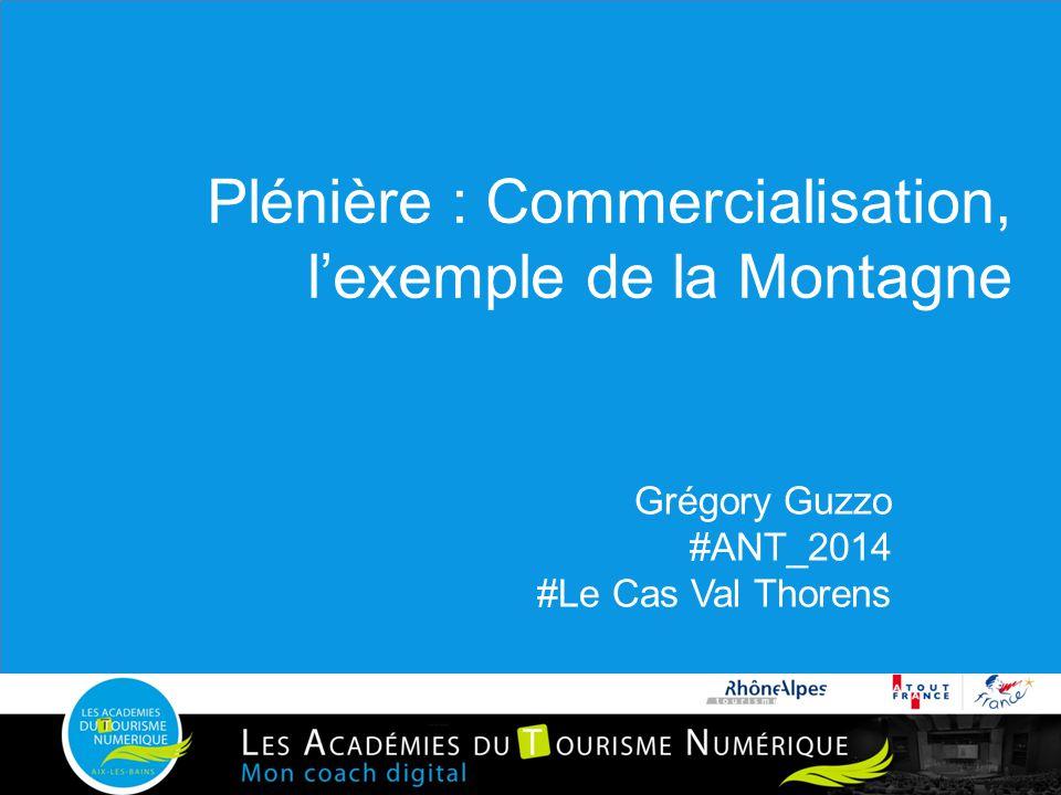Plénière : Commercialisation, l'exemple de la Montagne