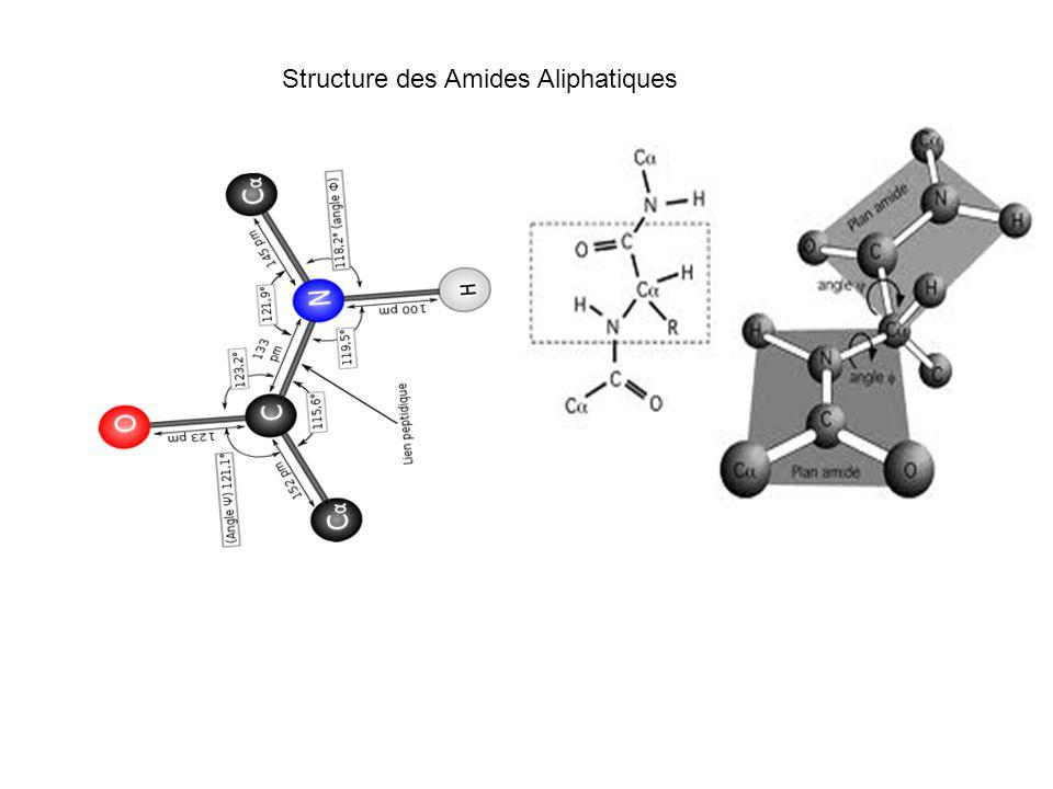 Structure des Amides Aliphatiques