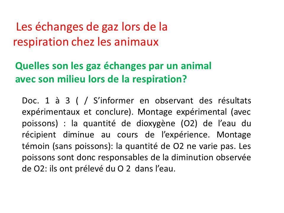 Les échanges de gaz lors de la respiration chez les animaux