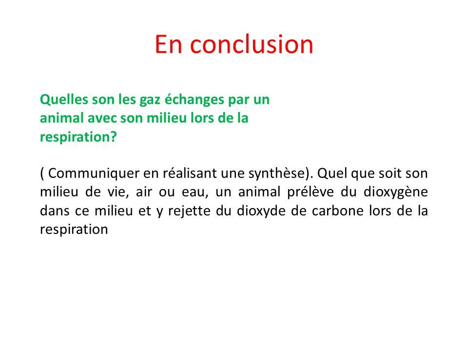 En conclusion Quelles son les gaz échanges par un animal avec son milieu lors de la respiration