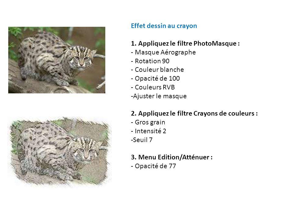 Effet dessin au crayon 1. Appliquez le filtre PhotoMasque : - Masque Aérographe. - Rotation 90. - Couleur blanche.