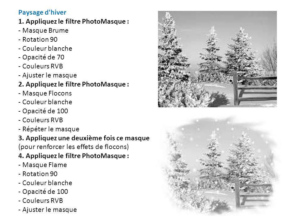 Paysage d hiver 1. Appliquez le filtre PhotoMasque : - Masque Brume. - Rotation 90. - Couleur blanche.