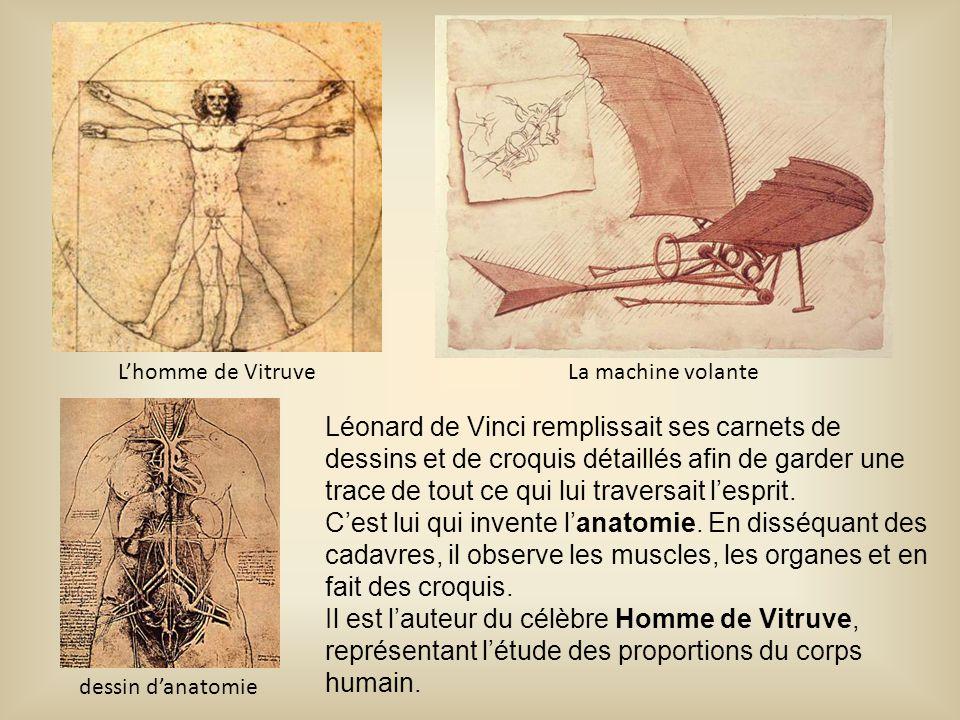 L'homme de Vitruve La machine volante.