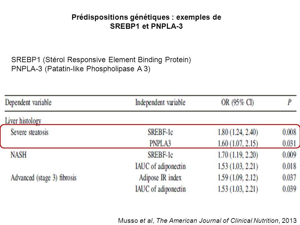 Prédispositions génétiques : exemples de SREBP1 et PNPLA-3