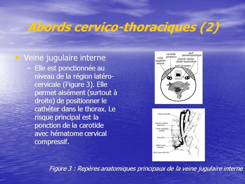 Abords cervico-thoraciques (2)