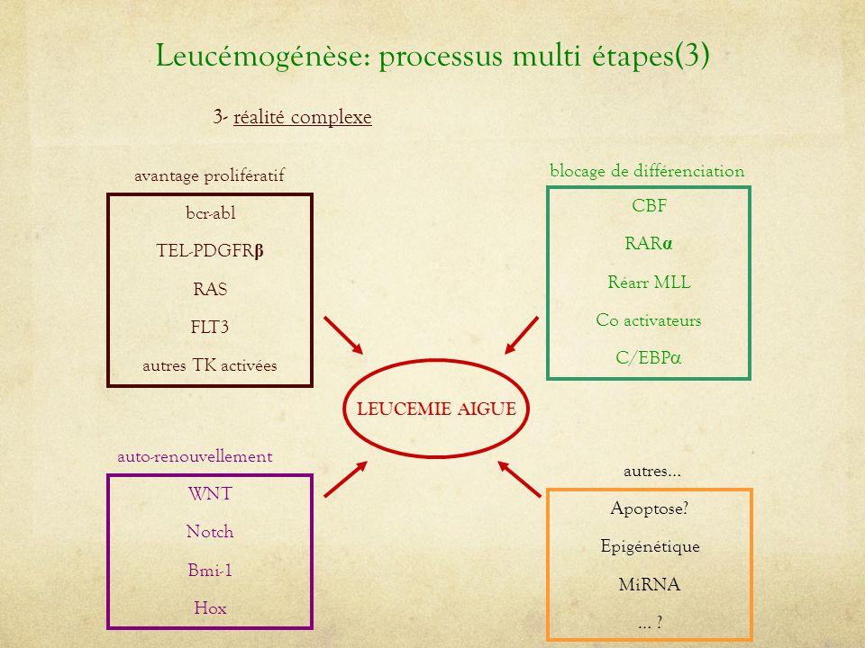 Leucémogénèse: processus multi étapes(3)