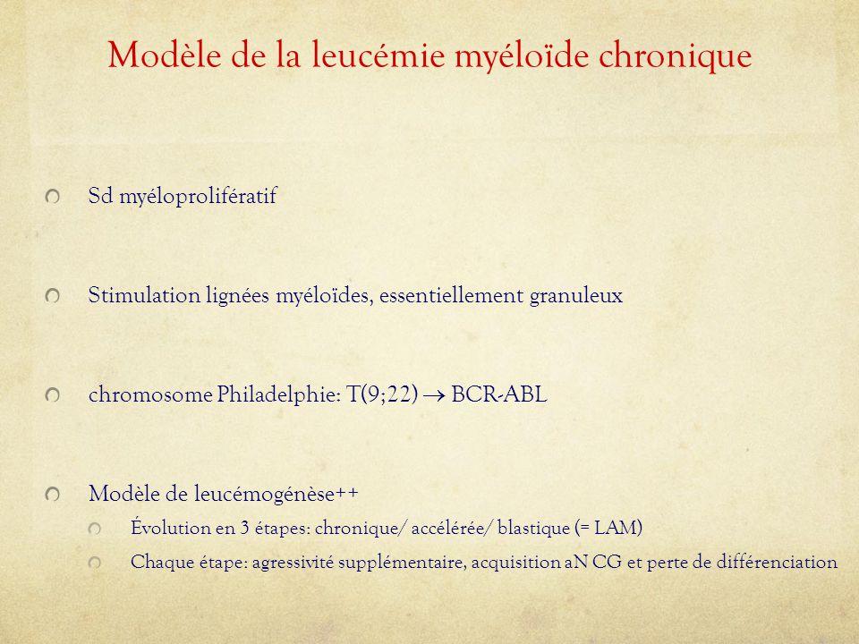Modèle de la leucémie myéloïde chronique