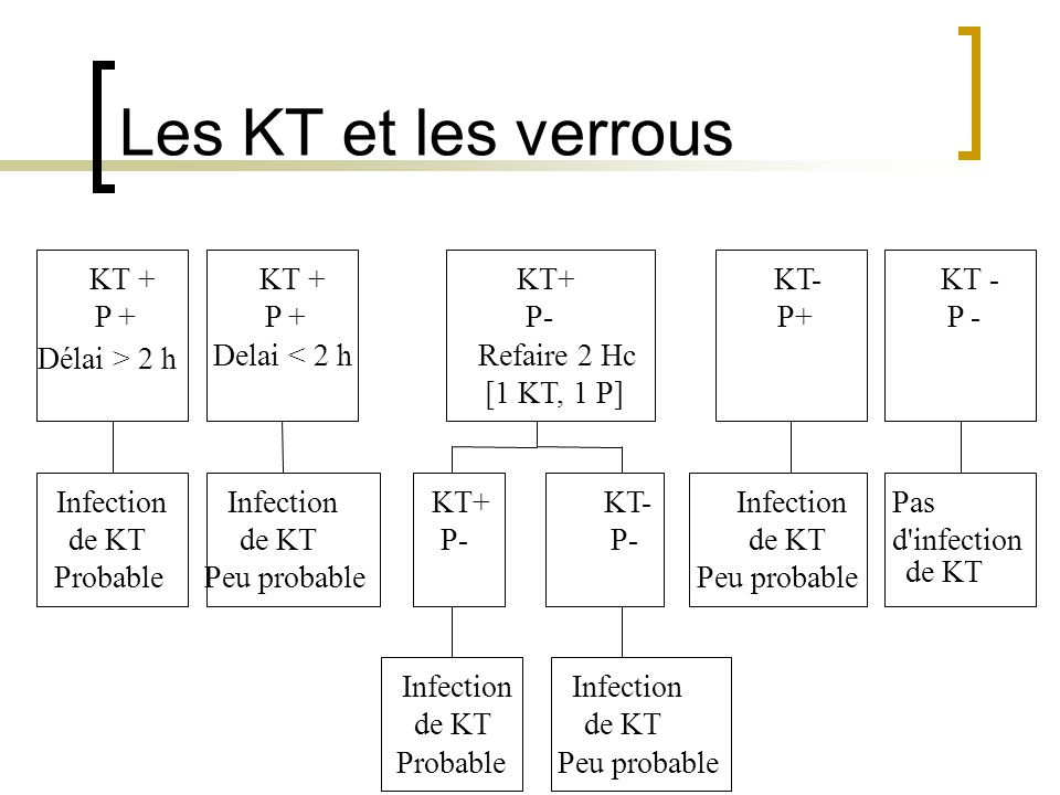 Les KT et les verrous KT + KT + KT+ KT- KT - P + P + P- P+ P -