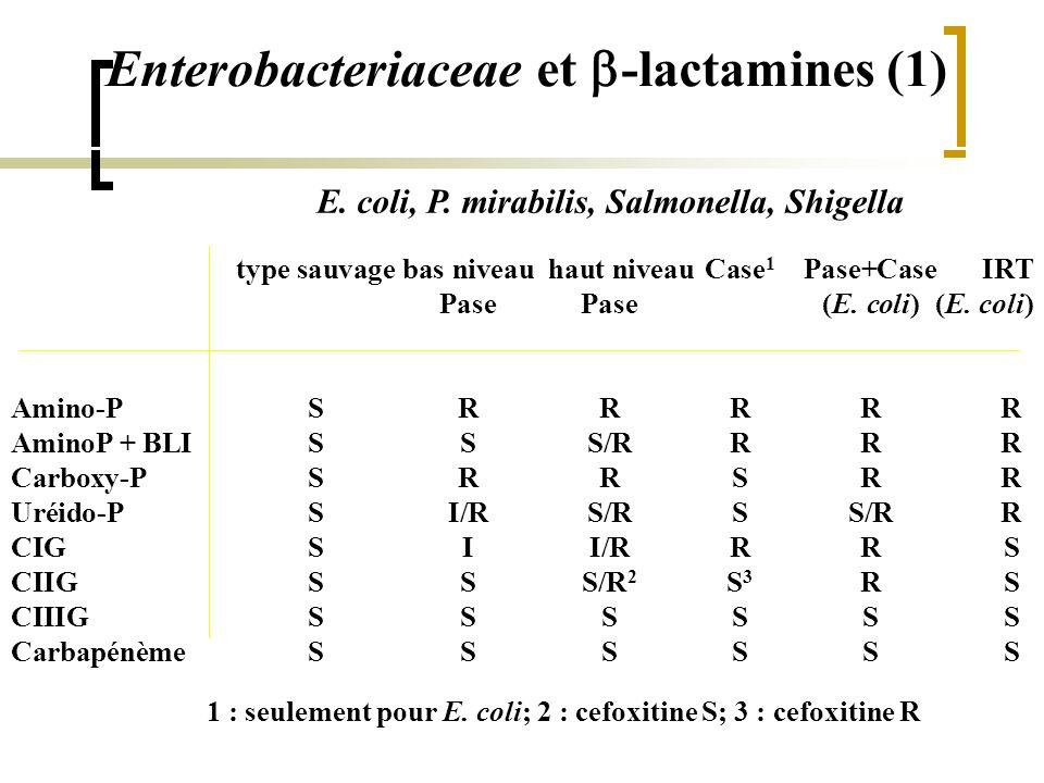 Enterobacteriaceae et b-lactamines (1)