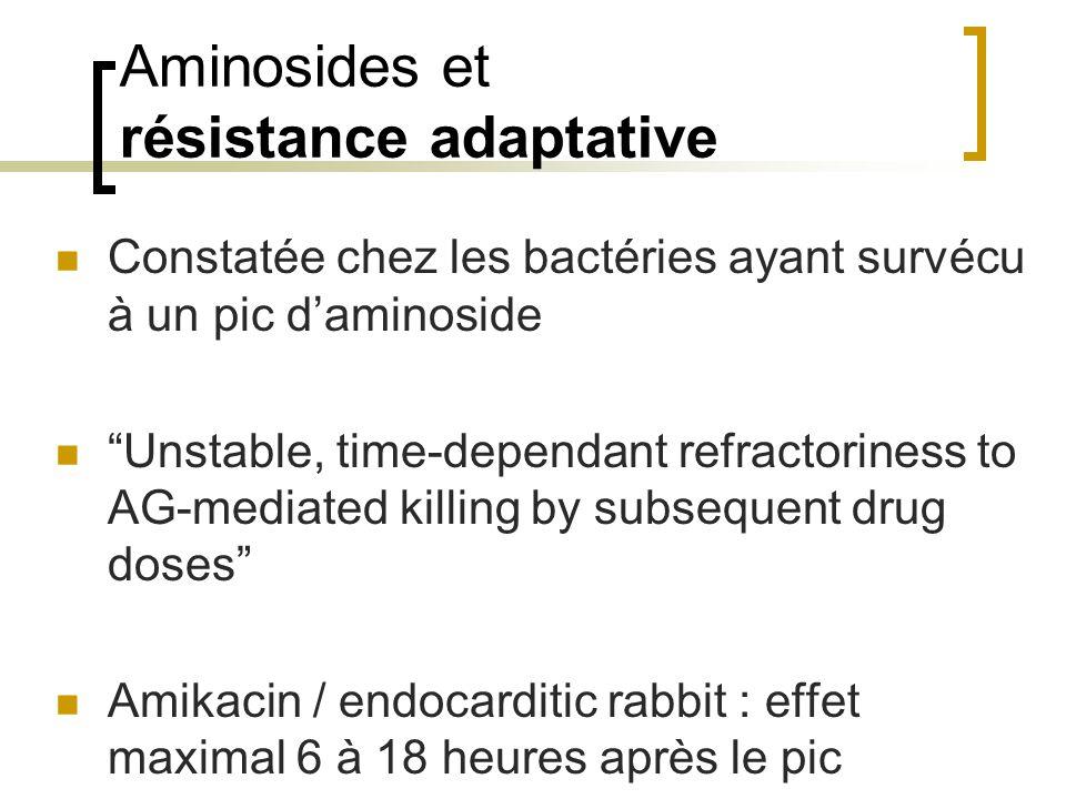 Aminosides et résistance adaptative