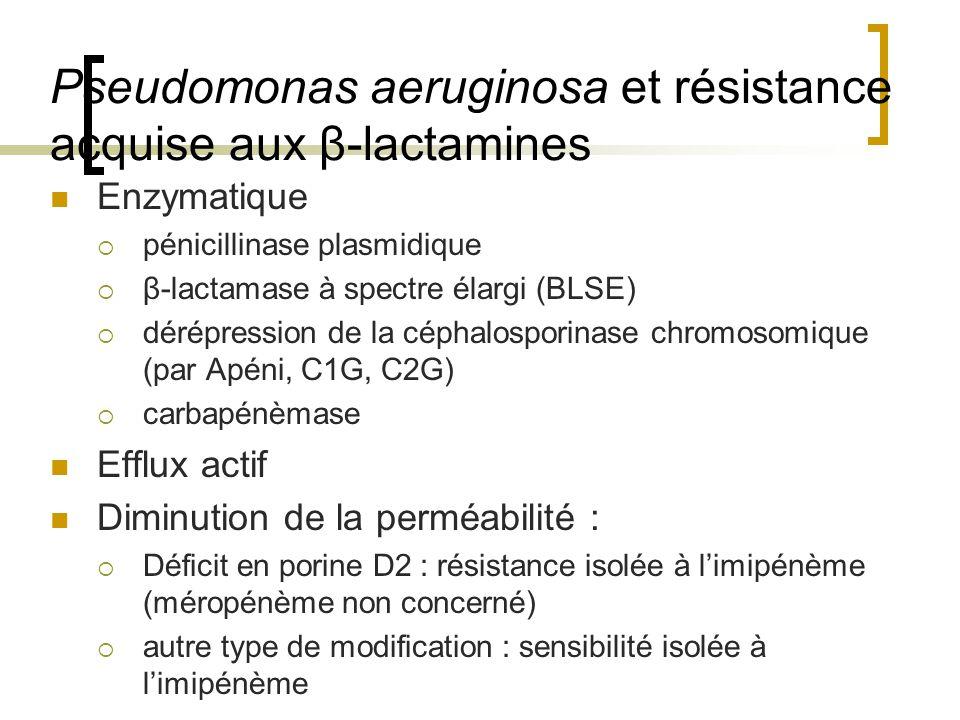 Pseudomonas aeruginosa et résistance acquise aux β-lactamines
