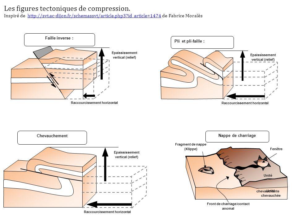Les figures tectoniques de compression.