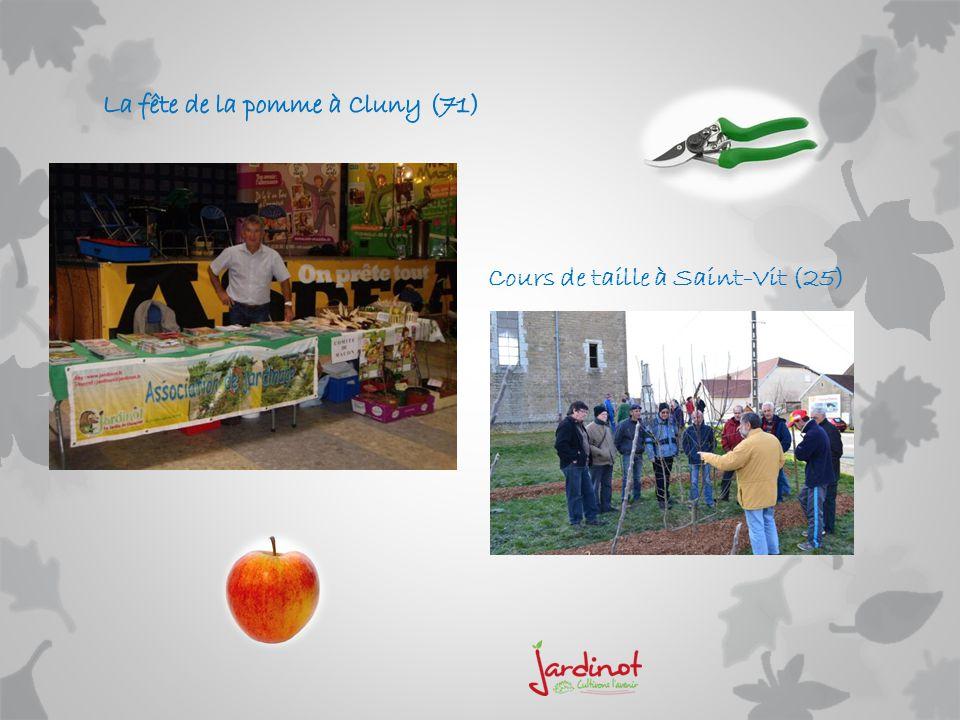La fête de la pomme à Cluny (71)