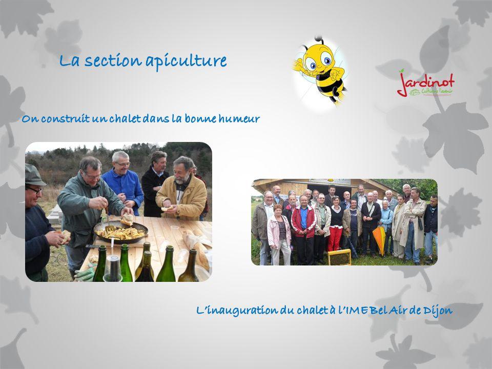 La section apiculture On construit un chalet dans la bonne humeur