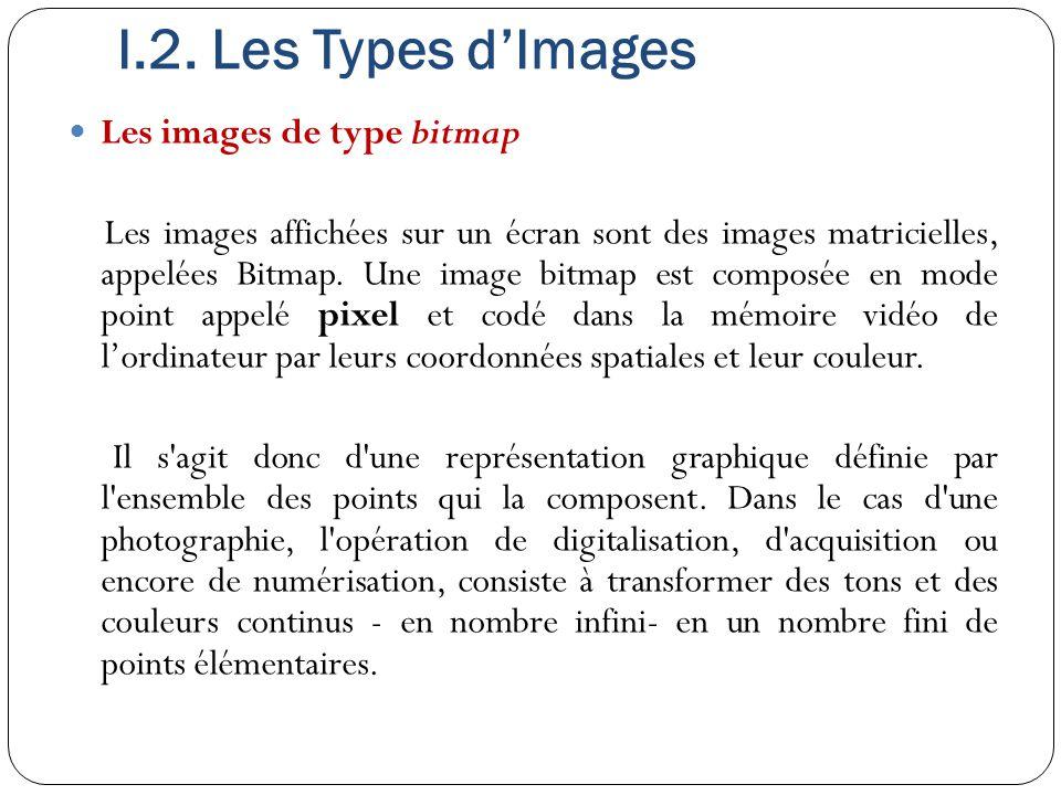 I.2. Les Types d'Images Les images de type bitmap