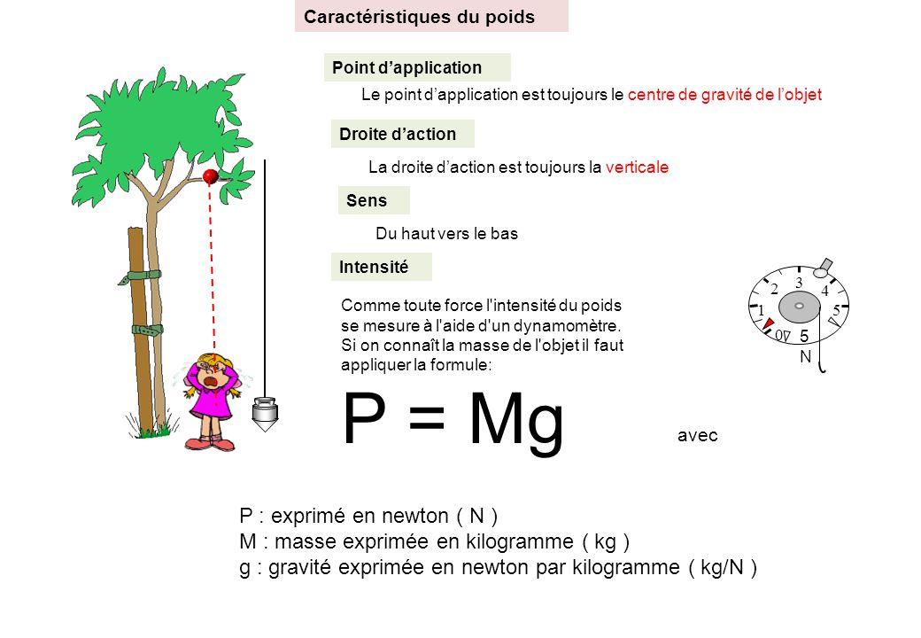 P = Mg P : exprimé en newton ( N )
