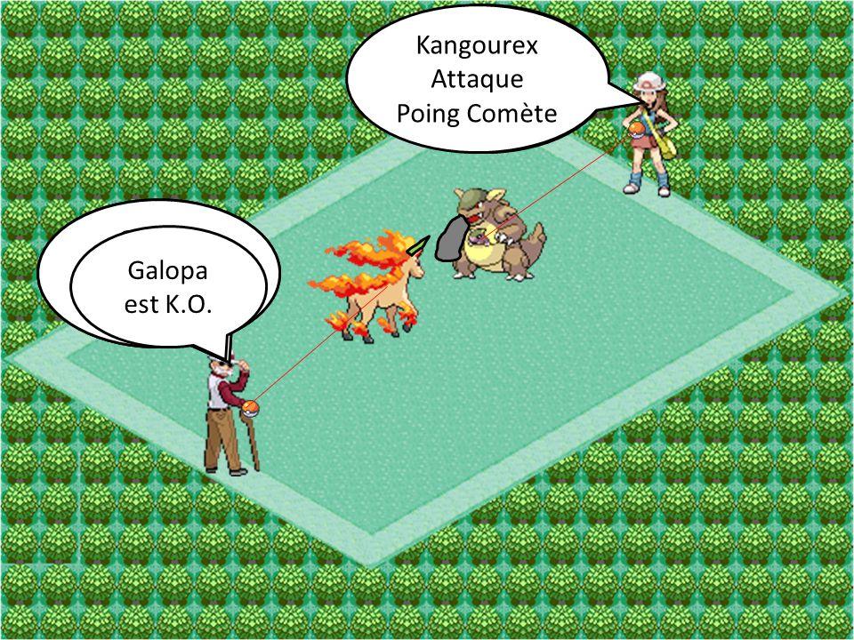 Kangourex Attaque. Poing Comète. Kangourex. Attaque. Ultimapoing. Galopa. Attaque. Mégacorne.