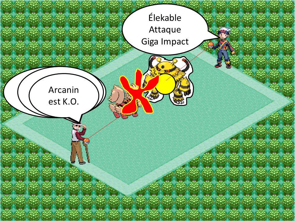 Élekable Attaque. Giga Impact. Élekable. Attaque. Boule Élek. Arcanin. Attaque. Vitesse Extrême.
