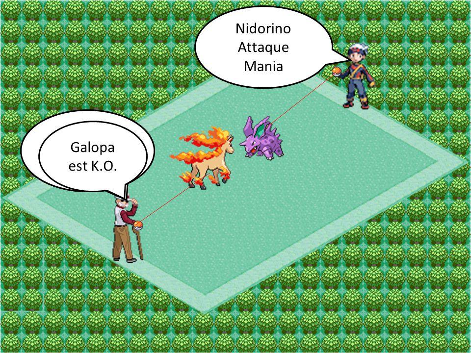 Nidorino Attaque. Double-Pied. Nidorino. Attaque. Mania. Galopa. Attaque. Rebond. Galopa. Attaque.