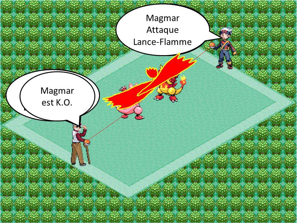 Magmar Attaque. Lance-Flamme. Magmar. Attaque. Poing de Feu. Magmar. Attaque. Lance-Flamme. Magmar.
