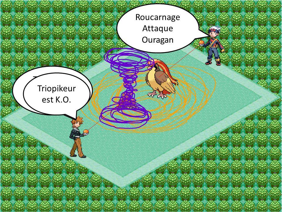 Roucarnage Attaque. Vive-Attaque. Roucarnage. Attaque. Ouragan. Triopikeur. Attaque. Tunnel.