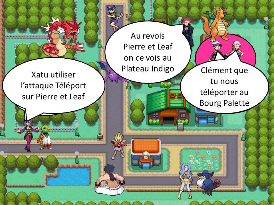 Au revois Pierre et Leaf on ce vois au Plateau Indigo