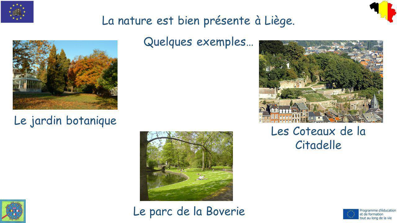 La nature est bien présente à Liège. Quelques exemples…