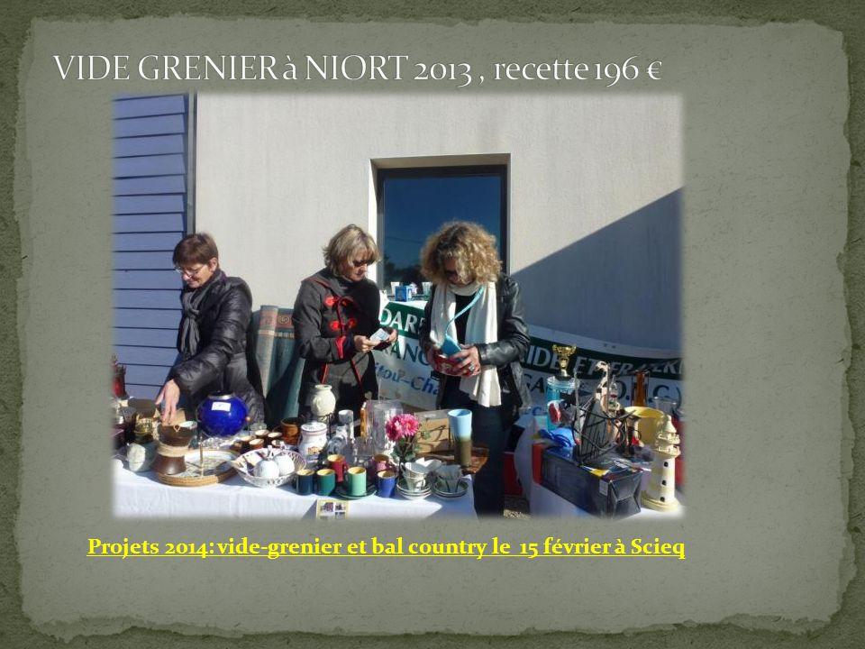 VIDE GRENIER à NIORT 2013 , recette 196 €