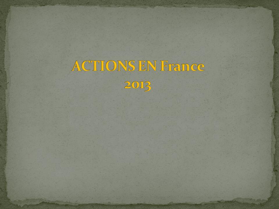 ACTIONS EN France 2013