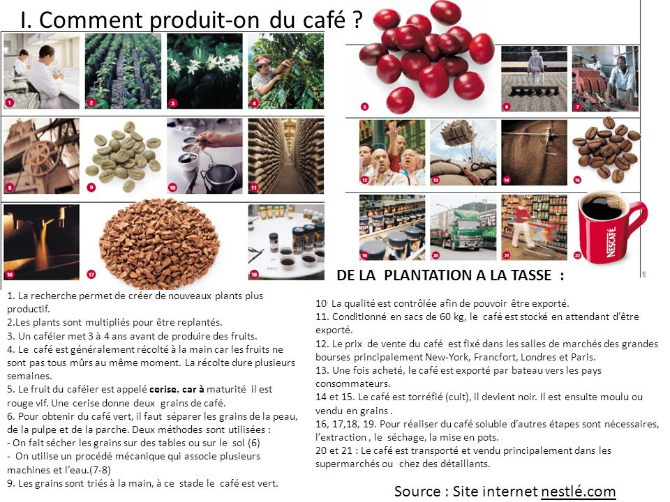 I. Comment produit-on du café