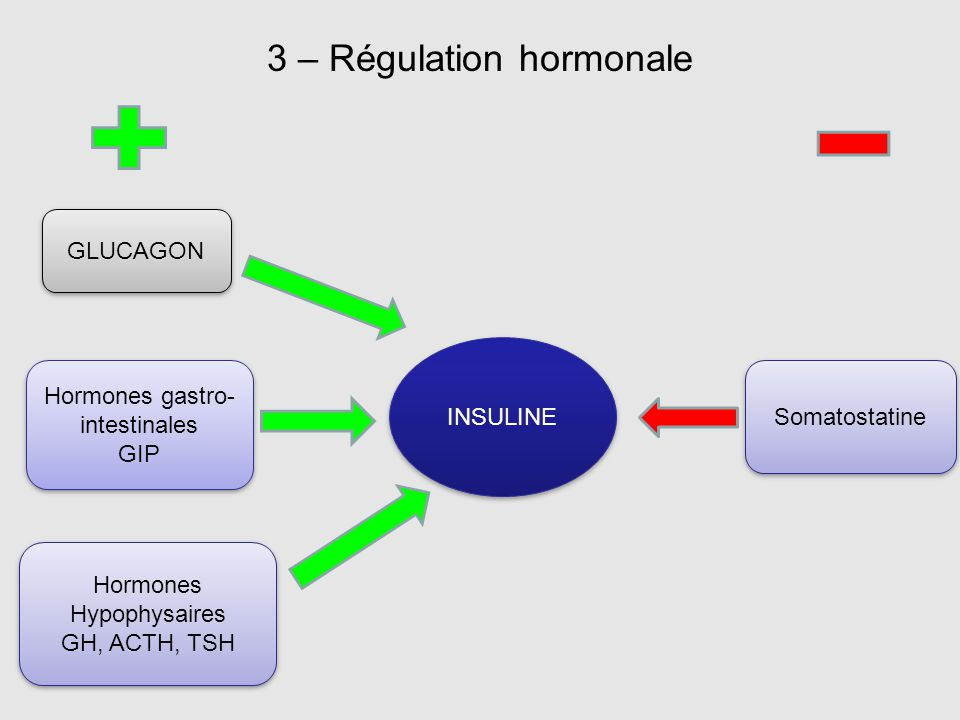 3 – Régulation hormonale