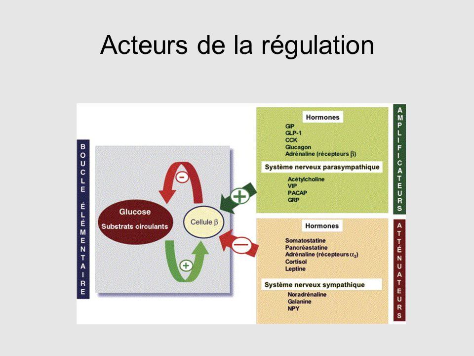 Acteurs de la régulation