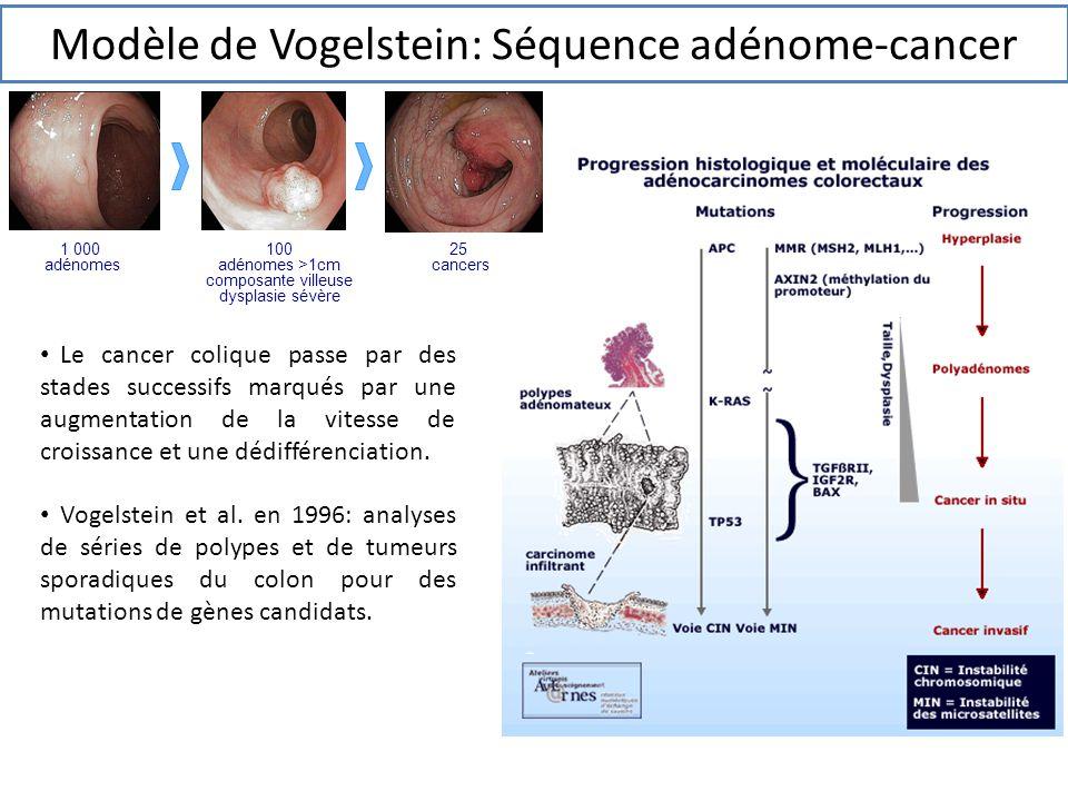 Modèle de Vogelstein: Séquence adénome-cancer
