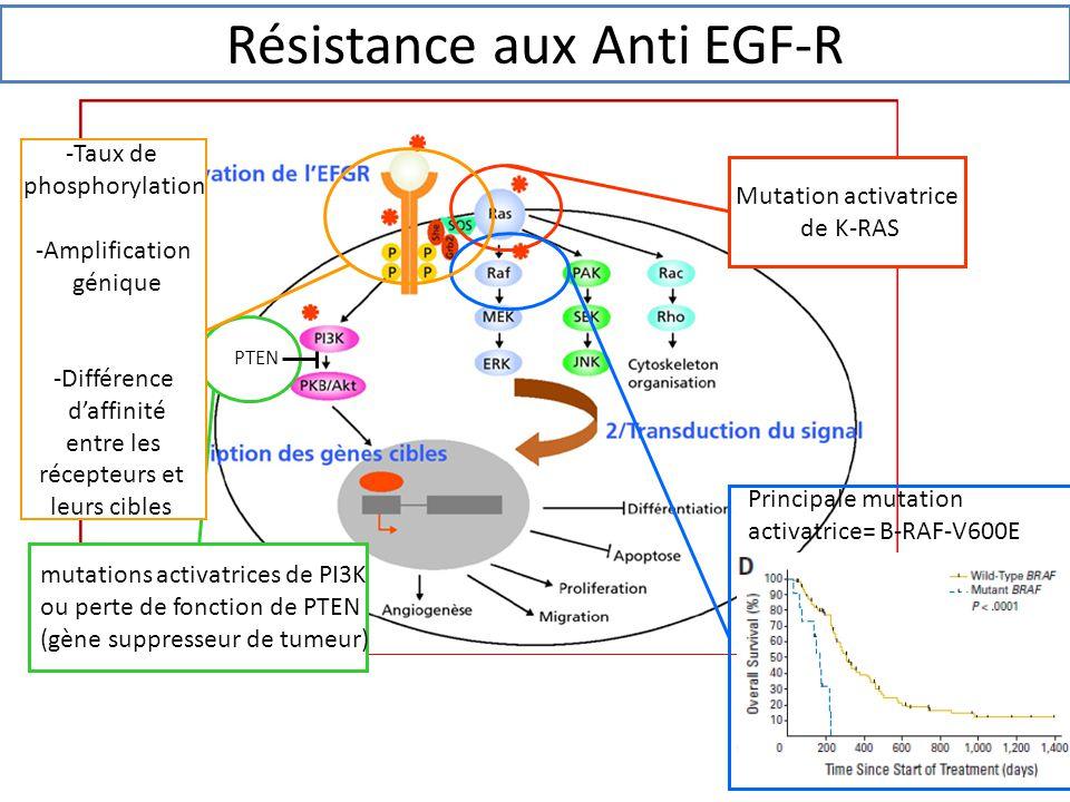 Résistance aux Anti EGF-R