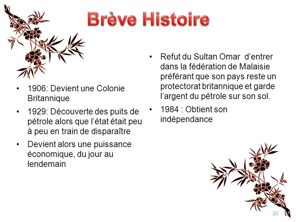 Brève Histoire