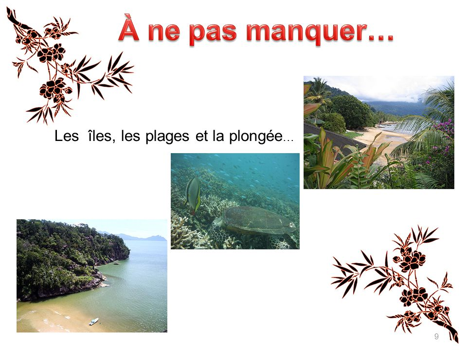 À ne pas manquer… Les îles, les plages et la plongée...