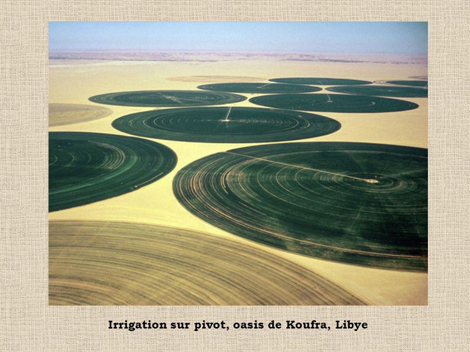 Irrigation sur pivot, oasis de Koufra, Libye