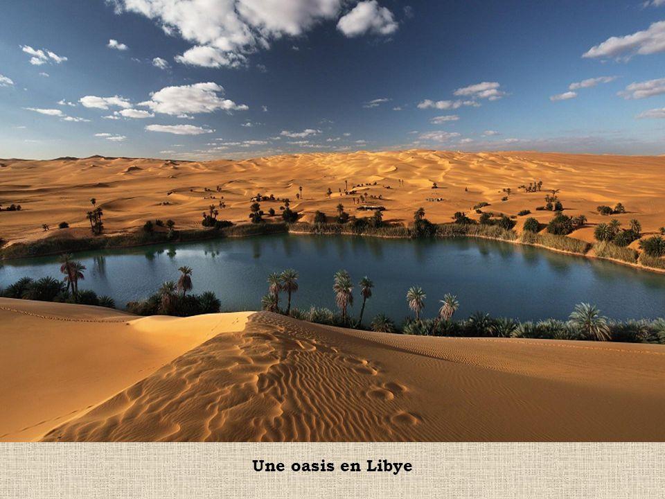 Une oasis en Libye