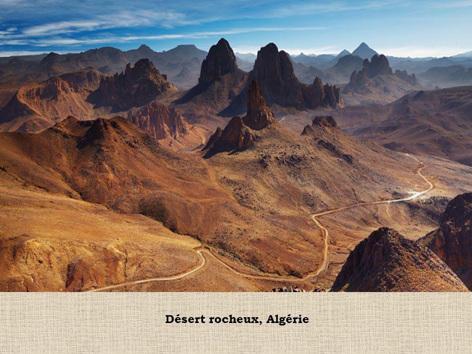 Désert rocheux, Algérie