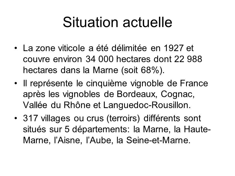 Situation actuelle La zone viticole a été délimitée en 1927 et couvre environ 34 000 hectares dont 22 988 hectares dans la Marne (soit 68%).