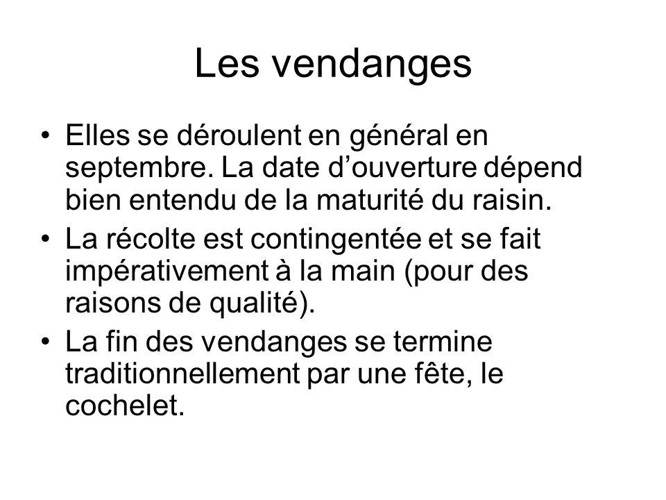 Les vendanges Elles se déroulent en général en septembre. La date d'ouverture dépend bien entendu de la maturité du raisin.