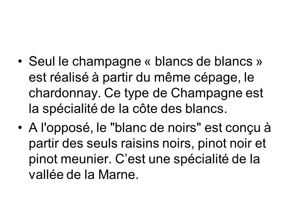 Seul le champagne « blancs de blancs » est réalisé à partir du même cépage, le chardonnay. Ce type de Champagne est la spécialité de la côte des blancs.