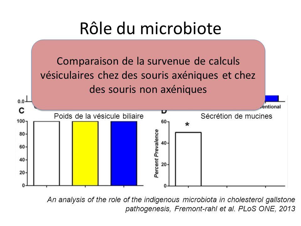 Rôle du microbiote Comparaison de la survenue de calculs vésiculaires chez des souris axéniques et chez des souris non axéniques.