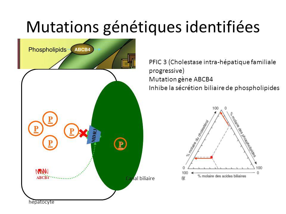 Mutations génétiques identifiées