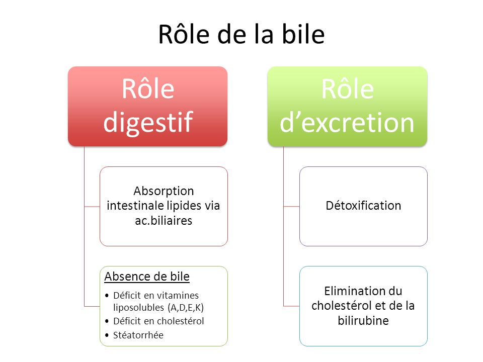 Rôle de la bile Rôle digestif