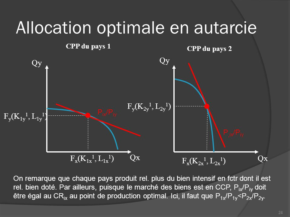Allocation optimale en autarcie